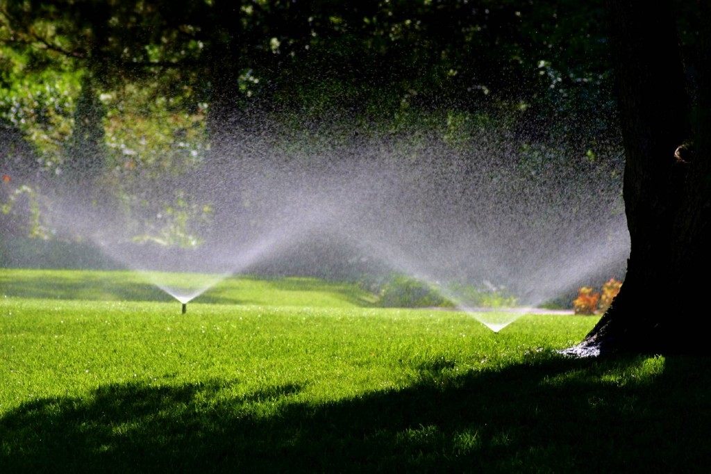 carmel-irrigation-landscaping-maintenance-carmel-landscaper