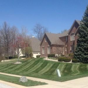 Lawn Care Services – Carmel Landscaper