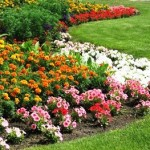 flower-installation-spring-summer-fall-careml-fishers-indianapokis-fortville-mccordsville